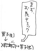 2008-06-27-3.jpg