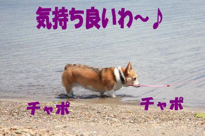 004_20080616153849.jpg