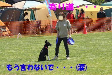 099_20080512212647.jpg