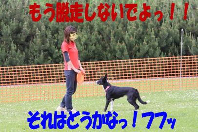 167_20080624153510.jpg