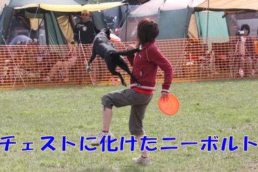 343_20080519145246.jpg