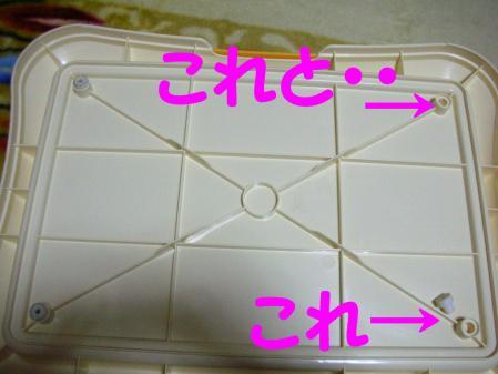 コピー ~ DSCN4469
