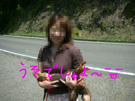 コピー ~ DSCN6436