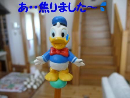 コピー ~ P1000795