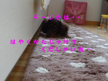 コピー ~ P1010405