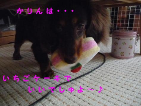 コピー ~ P1040822