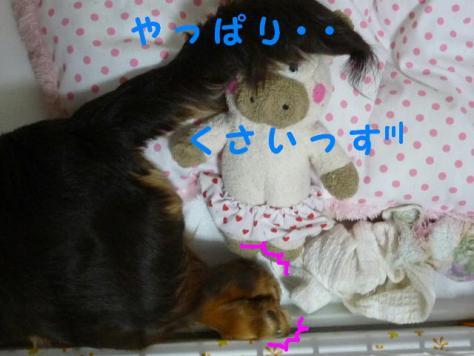 コピー ~ P1060270