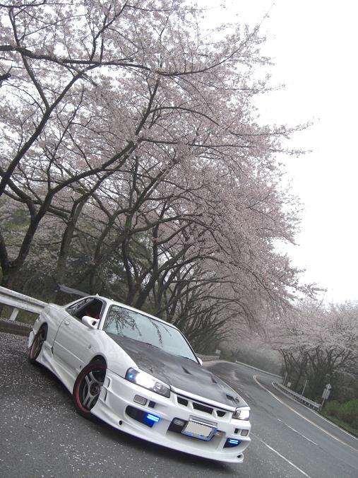 CIMG9181.jpg