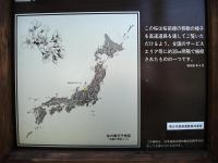 DSC00595_R.jpg