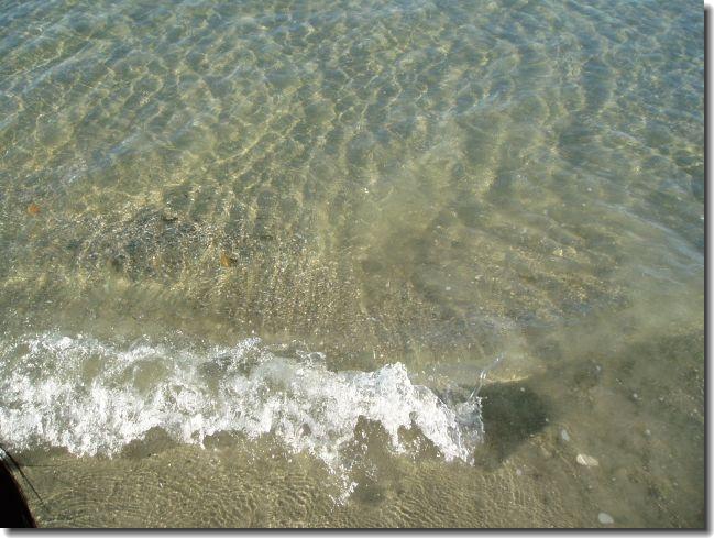 海の水キレイです