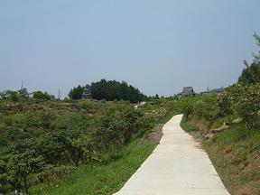 DSCF0151鳳台院風景
