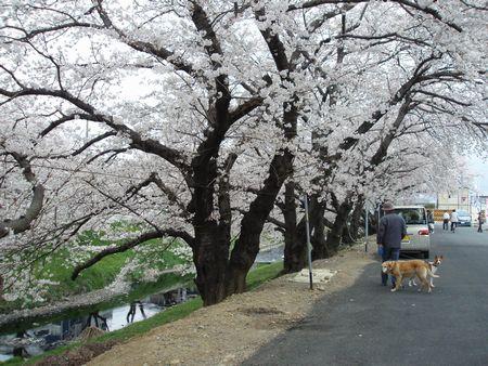 奥浜名湖自然歩道へ行きます。