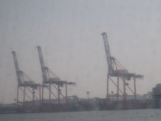 港のキリン
