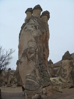 奇岩 きのこ