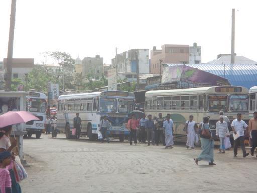 コロンボ・バス1