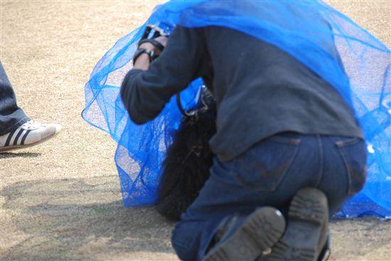2008_03埼玉コッカーオフ会 164_R
