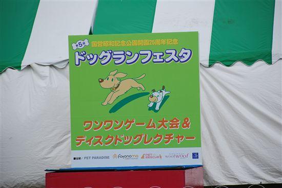 2008_05ドッグランフェスタ 033_R