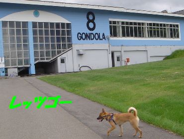 gonndora