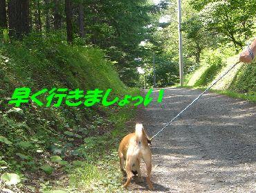 tsukimino