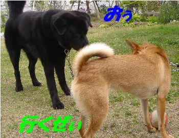 yuusuke3