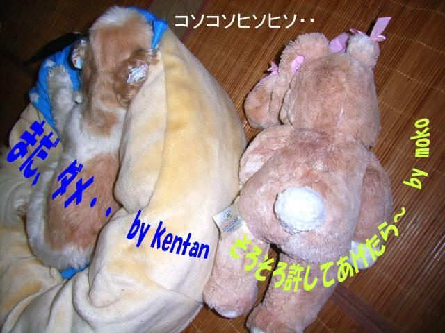 15925932_3039367804.jpg