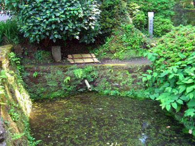 甘露の井3