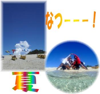 Picture3 夏