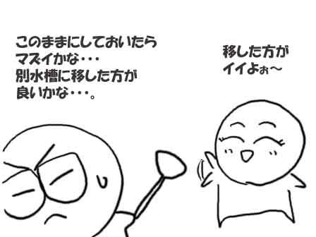 00191.jpg