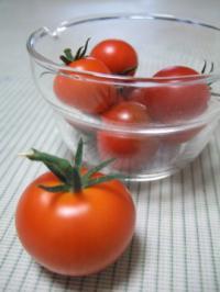 ベランダトマト
