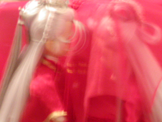 P1010117huangjia.jpg