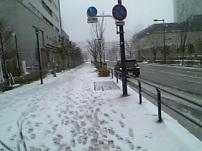 きむきむのぷーある日記_雪景色3