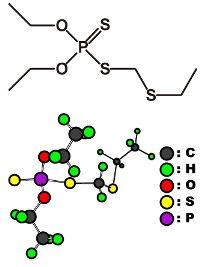 きむきむのぷーある日記_ホレートの化学式、構造式