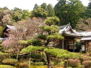 西明寺 本坊庭園