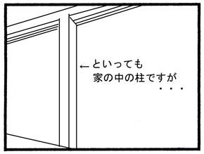 スモモの趣味05
