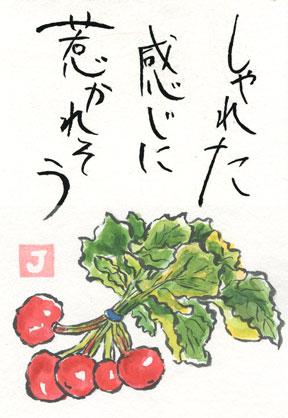 ラディシュ(絵手紙)