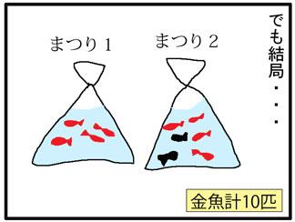 金魚403