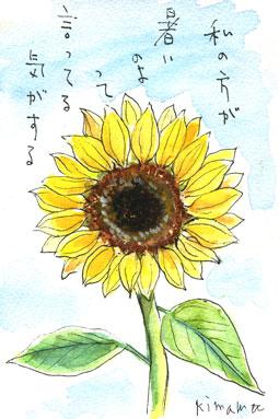 ひまわり02(絵手紙)