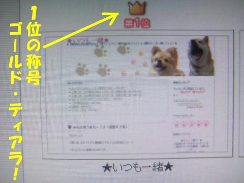 FC2No1c_convert_20080706023949.jpg