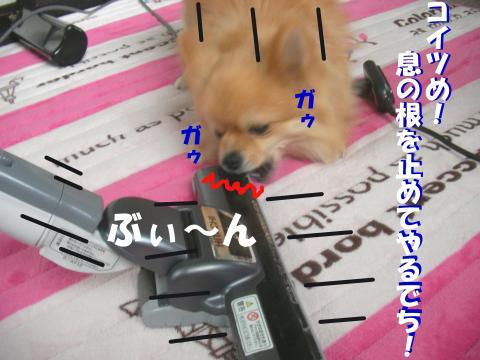 SA080413c_convert_20080415025432.jpg