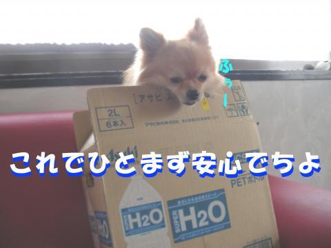 SA080526c_convert_20080527015432.jpg