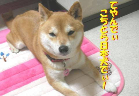 SK080619a_convert_20080625021648.jpg