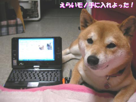 SK080630a_convert_20080701131858.jpg