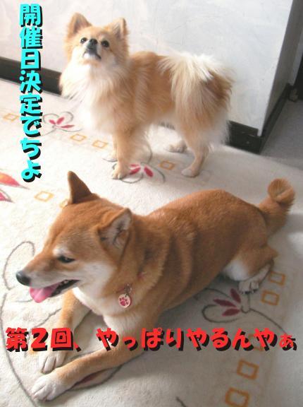 SW080305laa_convert_20080607015035.jpg