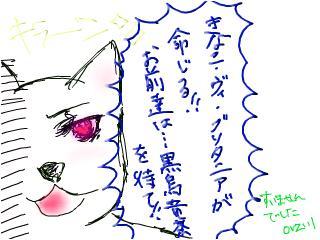 snap_kinakobiyori_200860135045.jpg