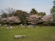 2008_0412_115415AA.jpg