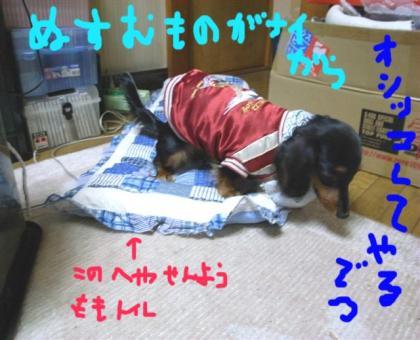 22_convert_20080419161446.jpg