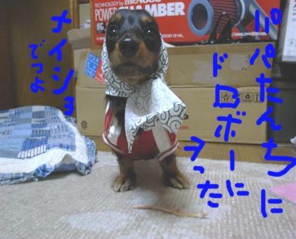 33_convert_20080419161515.jpg
