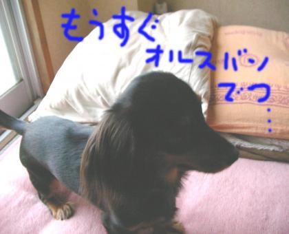 3_convert_20080416220124.jpg