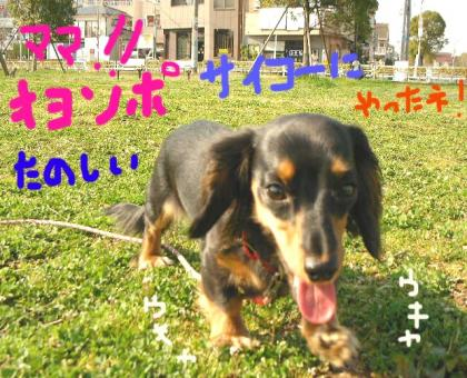 hisabisa4_convert_20080322162513.jpg