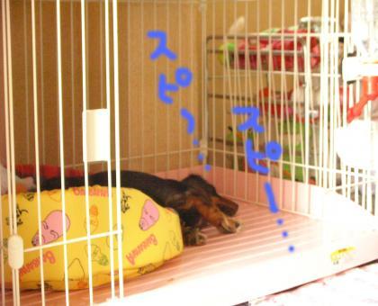 nennne_convert_20080616220010.jpg